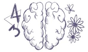 cerveau-GD